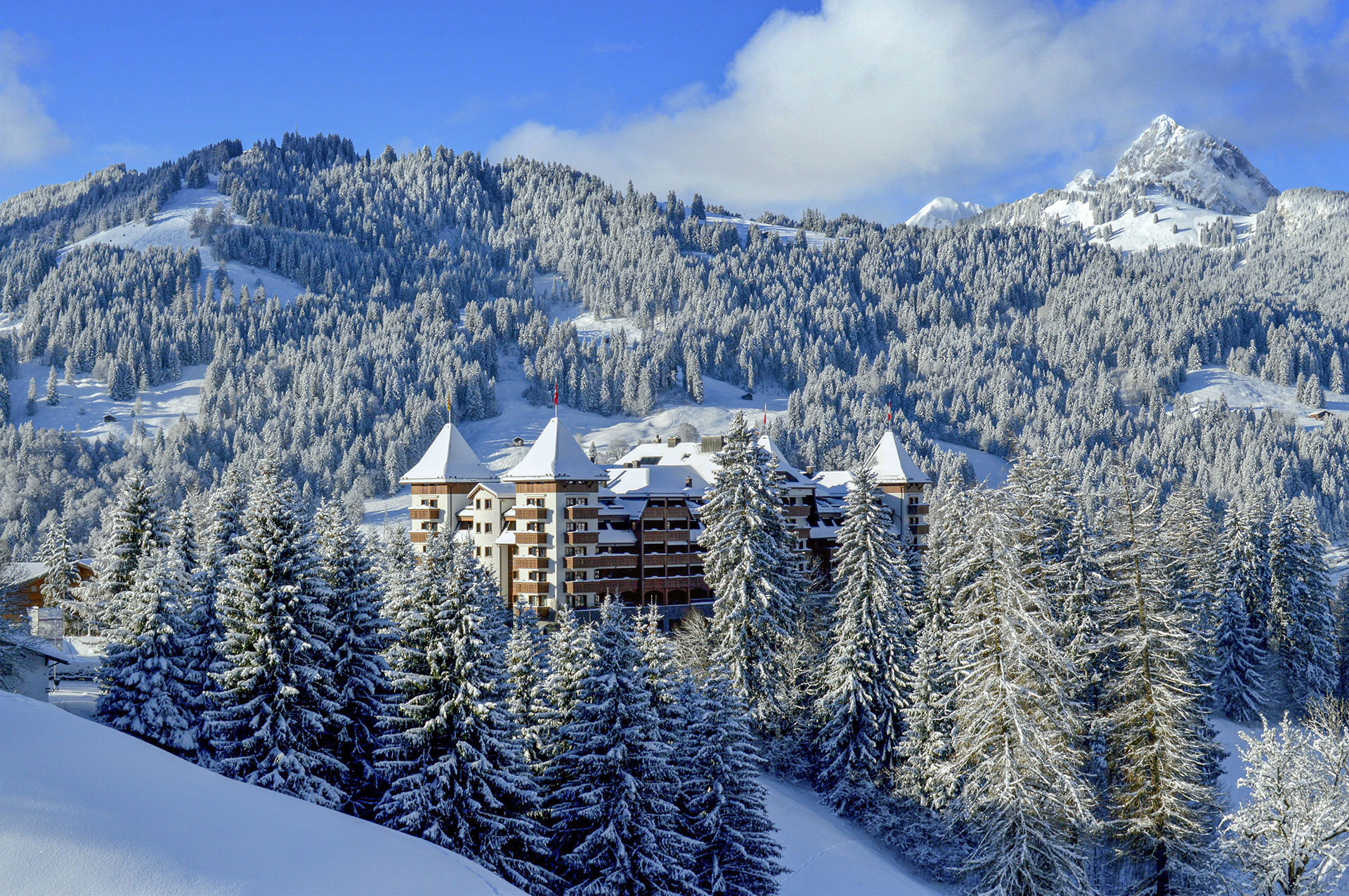 The-Alpina-Gstaad-(1).jpg