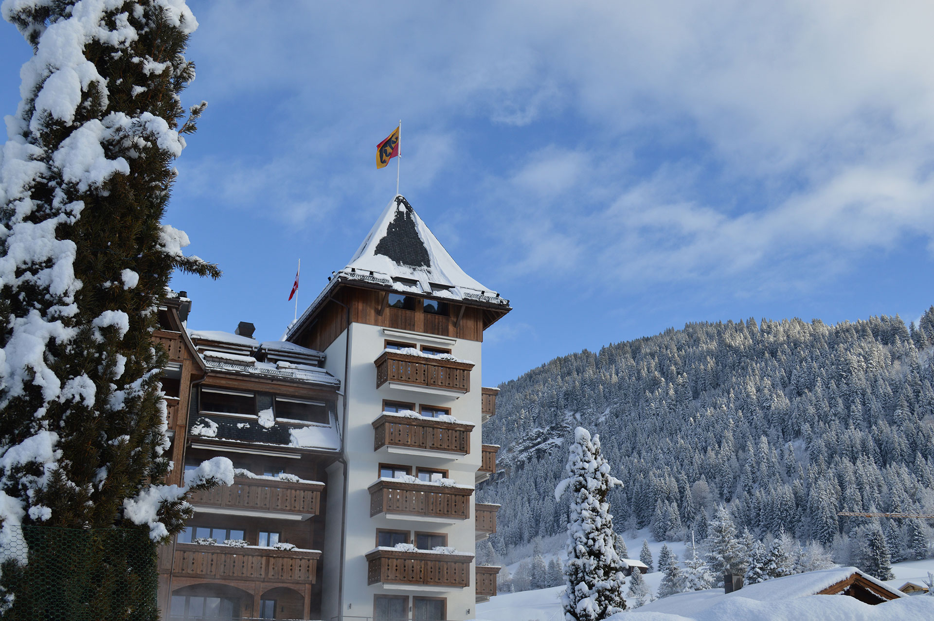 The-Alpina-Gstaad-(5).jpg